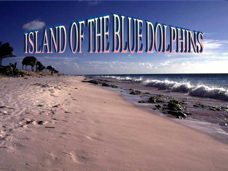 Won-a-pa-lei, a twelve-year-old Ghalas-at Indian girl, and her family lived a quiet life on an island known as the Island of the Blue Dolphins.