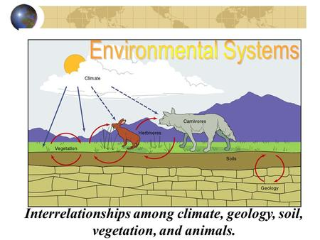 Interrelationships among climate, geology, soil, vegetation, and animals.