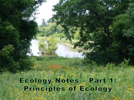  Ecology - The study of the interactions of organisms with one another and their physical environment The multiple levels of biological systems.