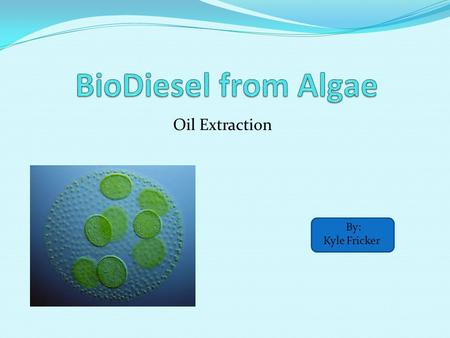 Oil Extraction By: Kyle Fricker. Background Information Acre-by-acre microalgae can produce 30-100 times the oil yield of soybeans for biodiesel production.