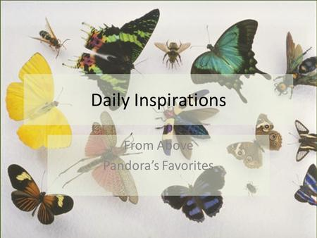Daily Inspirations From Above Pandora's Favorites.