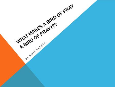 WHAT MAKES A BIRD OF PRAY A BIRD OF PRAY??? BY DIXIE BARNES.