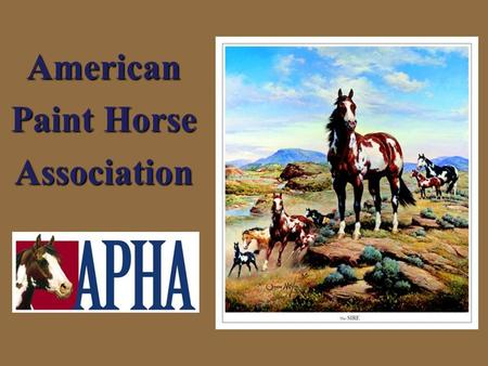 American Paint Horse Association. HORSES What are horses used for?  Work  Entertainment  Pleasure.