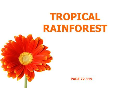 TROPICAL RAINFOREST PAGE 72-119.