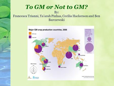 To GM or Not to GM? By: Francesca Trianni, Ya'arah Pinhas, Cecilia Hackerson and Ben Barczewski.