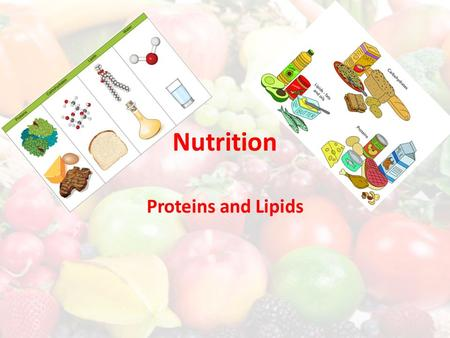 Nutrition Proteins and Lipids. After water, proteins are the most abundant substances in the body. – Used to repair bone, muscle, skin and blood cells,