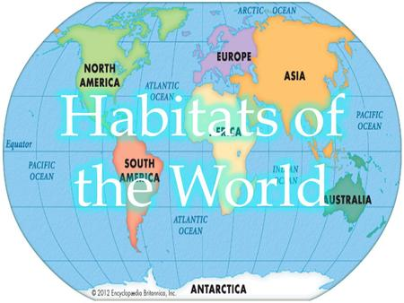 What is a habitat? Every animal has a habitat, which is where an animal (or plant) lives and grows. The habitat an animal lives in provides it with.