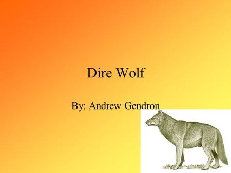Dire Wolf By: Andrew Gendron. Introduction The Dire Wolf was most abundant during the Pleistocene period in North America. About 10,000 years ago the.