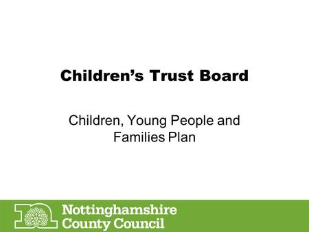Children's Trust Board Children, Young People and Families Plan.
