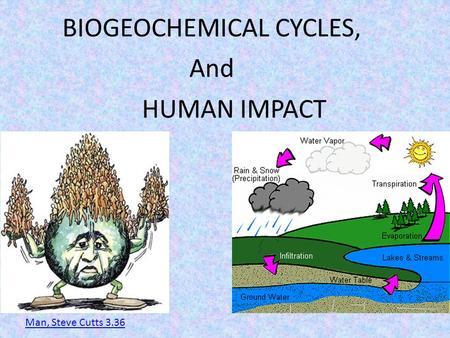 BIOGEOCHEMICAL CYCLES, And HUMAN IMPACT Man, Steve Cutts 3.36.