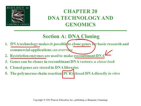 Copyright © 2002 Pearson Education, Inc., publishing as Benjamin Cummings Section A: DNA Cloning 1.DNA technology makes it possible to clone genes for.
