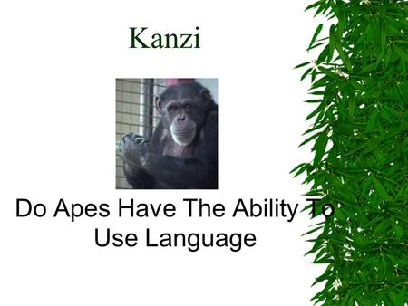 Kanzi Do Apes Have The Ability To Use Language. Can Chimpanzee's Learn Language ?  Humans have assumed one difference between themselves and other animals.