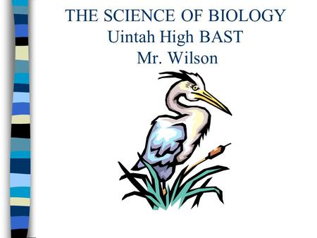 THE SCIENCE OF BIOLOGY Uintah High BAST Mr. Wilson.
