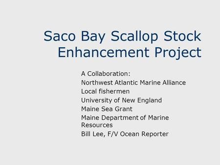 Saco Bay Scallop Stock Enhancement Project A Collaboration: Northwest Atlantic Marine Alliance Local fishermen University of New England Maine Sea Grant.