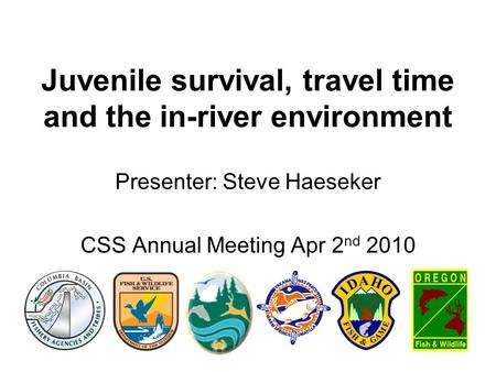 Juvenile survival, travel time and the in-river environment Presenter: Steve Haeseker CSS Annual Meeting Apr 2 nd 2010.