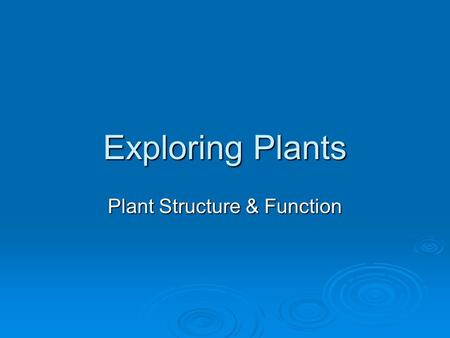 Exploring Plants Plant Structure & Function. Tissues  Vascular tissue form strands that conduct water, minerals, & nutrients through a plant  Dermal.