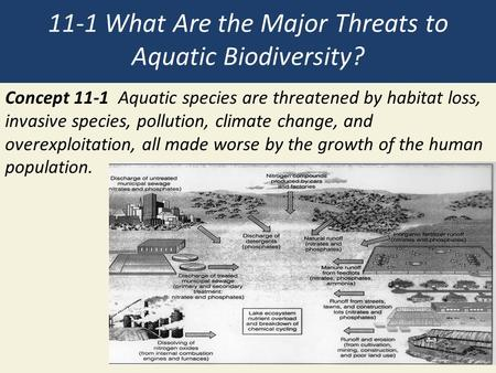 11-1 What Are the Major Threats to Aquatic Biodiversity? Concept 11-1 Aquatic species are threatened by habitat loss, invasive species, pollution, climate.