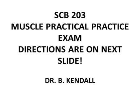 SCB 203 MUSCLE PRACTICAL PRACTICE EXAM DIRECTIONS ARE ON NEXT SLIDE! DR. B. KENDALL.