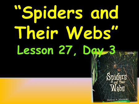 If you could talk with a spider, what would you say to it? What would you talk about? What questions would you ask?
