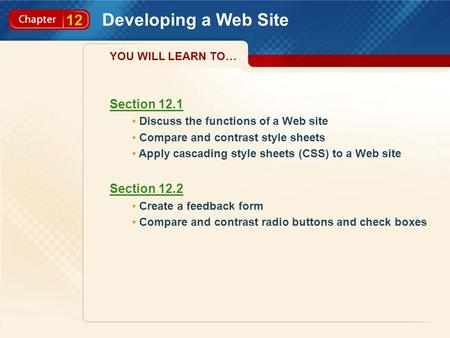 12 Developing a Web Site Section 12.1 Discuss the functions of a Web site Compare and contrast style sheets Apply cascading style sheets (CSS) to a Web.
