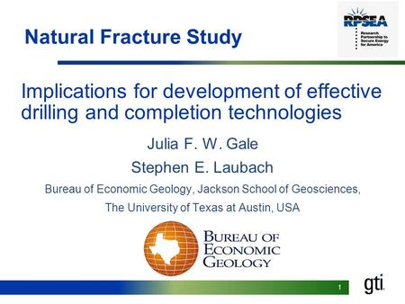 1 Implications for development of effective drilling and completion technologies Julia F. W. Gale Stephen E. Laubach Bureau of Economic Geology, Jackson.