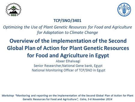 Overview of the implementation of the Second Global Plan of Action for Plant Genetic Resources for Food and Agriculture in Egypt Abeer Elhalwagi Senior.