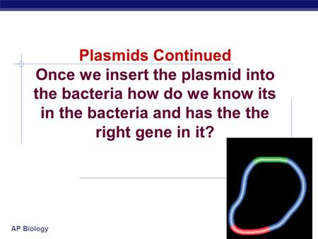 AP Biology 2007-2008 Plasmids Continued Once we insert the plasmid into the bacteria how do we know its in the bacteria and has the the right gene in.