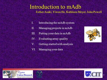 Introduction to mAdb Esther Asaki, Yiwen He, Kathleen Meyer, John Powell I.Introducing the mAdb system II.Managing projects in mAdb III.Putting your data.