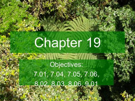 Chapter 19 Objectives: 7.01, 7.04, 7.05, 7.06, 8.02, 8.03, 8.06, 9.01.