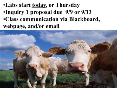 Labs start today, or Thursday Inquiry 1 proposal due 9/9 or 9/13 Class communication via Blackboard, webpage, and/or email.