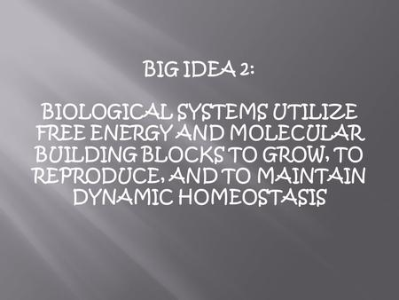 BIG IDEA 2: BIOLOGICAL SYSTEMS UTILIZE FREE ENERGY AND MOLECULAR BUILDING BLOCKS TO GROW, TO REPRODUCE, AND TO MAINTAIN DYNAMIC HOMEOSTASIS.