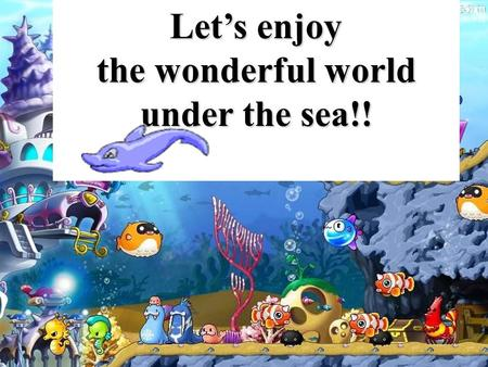 Let's enjoy the wonderful world under the sea!!. Dolphins 海豚.