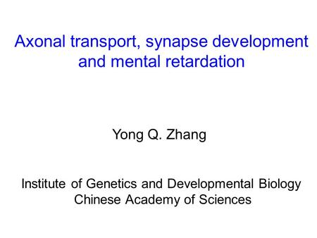 Axonal transport, synapse development and mental retardation Yong Q. Zhang Institute of Genetics and Developmental Biology Chinese Academy of Sciences.