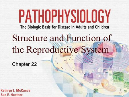 Structure and Function of the Reproductive System Chapter 22.