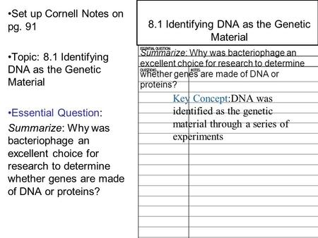 8.2 Structure of DNA Set up Cornell Notes on pg. 91 Topic: 8.1 Identifying DNA as the Genetic Material Essential Question: Summarize: Why was bacteriophage.