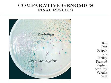 Comparative Genomics Final Results Ben Dan Deepak Esha Kelley Pramod Raghav Smruthy Vartika Will.