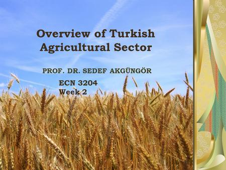Overview of Turkish Agricultural Sector PROF. DR. SEDEF AKGÜNGÖR ECN 3204 Week 2.