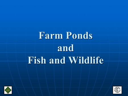 "Farm Ponds and Fish and Wildlife. Ponds provide fish and wildlife habitat Leave shallow water pond margins or ""shelves"" with submerged and emergent vegetation."