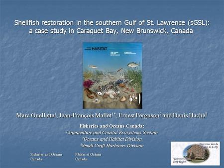 Shellfish restoration in the southern Gulf of St. Lawrence (sGSL): a case study in Caraquet Bay, New Brunswick, Canada Shellfish restoration in the southern.