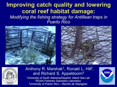 Improving catch quality and lowering coral reef habitat damage: Anthony R. Marshak 1, Ronald L. Hill 2, and Richard S. Appeldoorn 3 Modifying the fishing.