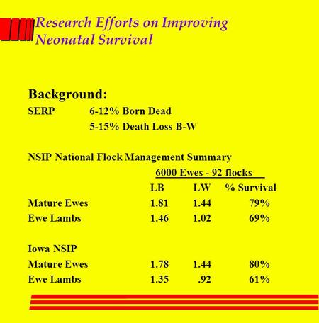 Research Efforts on Improving Neonatal Survival Background: SERP6-12% Born Dead 5-15% Death Loss B-W NSIP National Flock Management Summary 6000 Ewes -