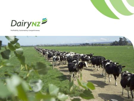 New Zealand's dairy industry Hon. John Luxton Chairman DairyNZ.