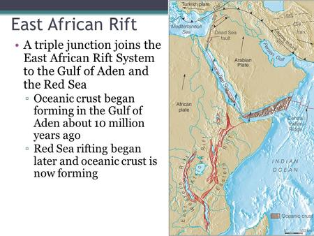 East African Rift A triple junction joins the East African Rift System to the Gulf of Aden and the Red Sea Oceanic crust began forming in the Gulf.
