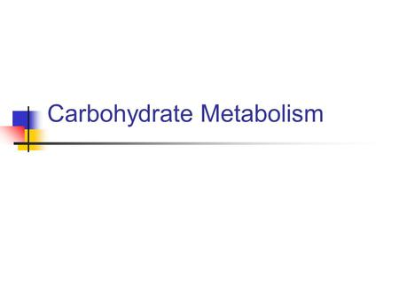 Carbohydrate Metabolism. An Overview of Metabolism.