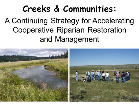 Creeks & Communities: A Continuing Strategy for Accelerating Cooperative Riparian Restoration and Management.
