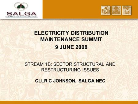 STREAM 1B: SECTOR STRUCTURAL AND RESTRUCTURING ISSUES CLLR C JOHNSON, SALGA NEC ELECTRICITY DISTRIBUTION MAINTENANCE SUMMIT 9 JUNE 2008.