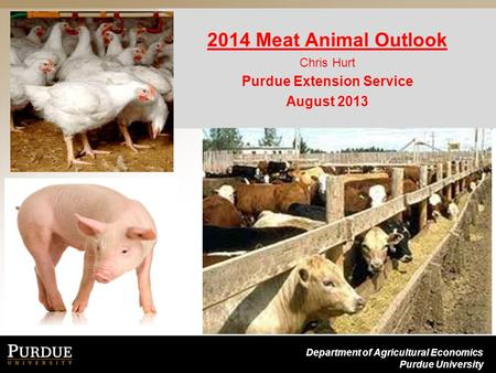 Department of Agricultural Economics Purdue University 2014 Meat Animal Outlook Chris Hurt Purdue Extension Service August 2013.