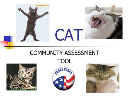 CAT COMMUNITY ASSESSMENT TOOL. I WISH I HAD SOME SORT OF TOOL TO HELP ME UNDERSTAND THE NEEDS AND RESOURCES OF MY COMMUNITY AS WELL AS OPPORTUNITIES FOR.