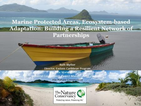 Marine Protected Areas, Ecosystem-based Adaptation: Building a Resilient Network of Partnerships Ruth Blyther Director, Eastern Caribbean Program Anne.