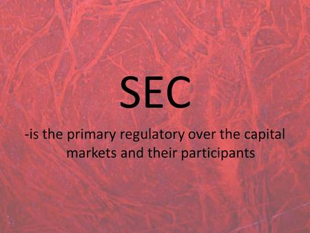 SEC -is the primary regulatory over the capital markets and their participants.